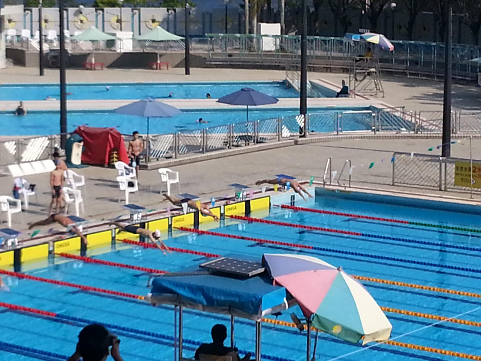 Po leung kuk joint schools swimming gala w tnkjsc Tong high school swimming pool