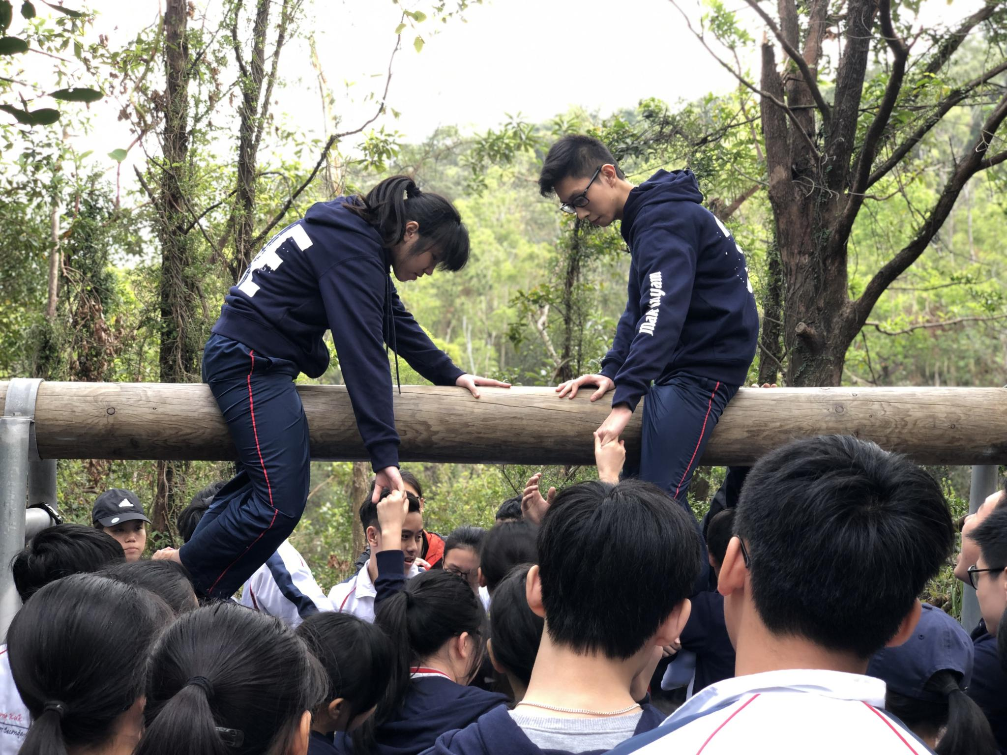 Students are trying to pull their friends up to sit on the log.